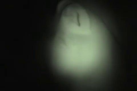 Семейная пара казахов нежно трахаются в постели